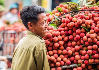 7 meilleurs fruits vietnamiens à gouter au moins une fois